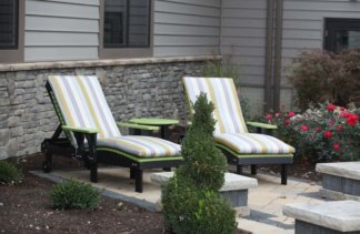 Lounge Chairs Lime Green & Black with Cushions